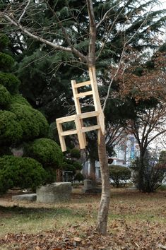 Kim Myeonbeo - Chair Oak tree