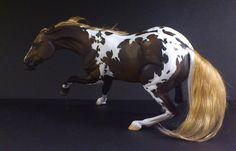 resin modelhorses gallery - anja-franke-artworkss Webseite!