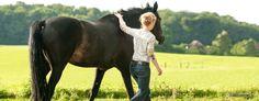 Eins werden mit dem Pferd: Was ist der Schlüssel zum Erfolg?
