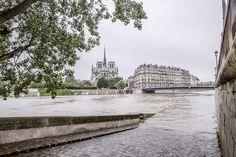 Ile de la cité/ile saint Louis - Paris inondations Juin 2016