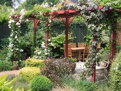 The best pergola plants are ones that will grow rapidly to cover the structure. Here are some good pergola plants that gardener can choose. Backyard Pergola, Pergola Shade, Pergola Kits, Pergola Ideas, Patio Ideas, Pergola Roof, Cheap Pergola, Garden Ideas, Outdoor Rooms