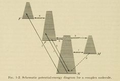 "nemfrog - Fig. 1-2. ""Schematic potential-energy diagram for..."