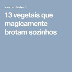 13 vegetais que magicamente brotam sozinhos