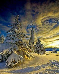 Winter, I wish it would snow! I Love Snow, I Love Winter, Winter Snow, Beautiful Winter Scenes, Winter Magic, Winter's Tale, Winter Scenery, Snow Scenes, Winter Beauty