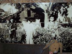 Carolyn Stearns Storyteller: Bunny Visits V. Sattui Winery Napa, California