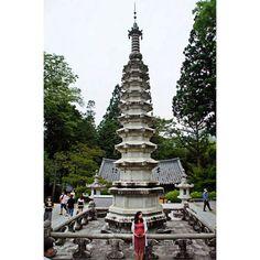 Instagram의 Yoojun Song님: 쌍계사. 하원이 세상에 나오기 전에.. #경상남도 #하동군 #화개면 #쌍계사 #나들이 #드라이브 #주말 #화개장터 #데이트 #여행스타그램 #여행 #9층석탑 #Korea #Gyeongsangnamdo #Had