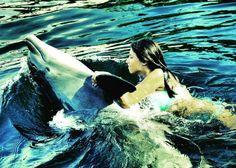 Nadar com golfinhos pra valer é possível perto de Miami em Islamorada. Veja detalhes aqui http://ift.tt/2hoVuvR / Wanna swim with dolphins? Like really swim? Head to Islamorada Theater of the Seas!