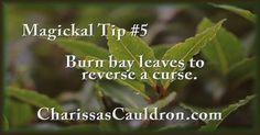 Magickal Tip #5 – Charissa's Cauldron