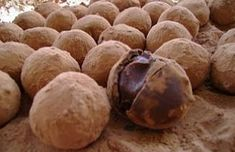 Receita de Trufa de Nutella | Receitas Supreme
