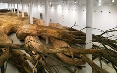 henrique oliveira roots his largest installation to date at the MAC, sao paulo - designboom | architecture