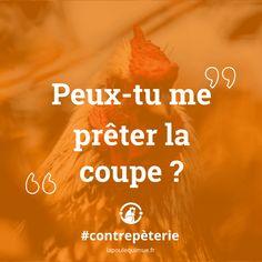 🐔 Peux-tu me prêter la coupe ? #contrepèterie #lapoulequimue #prêt #coupe #soissympa #allezquoi State Crafts