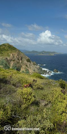 The view from the end of the Ram Head Trail on St John, USVI. One of the TOP HIKES on the Island!!!!!