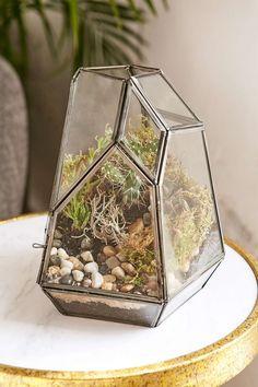Magical Thinking - Terrarium en verre à facettes