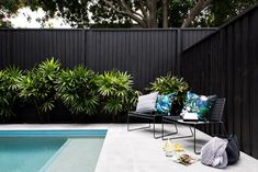 If you are working with the best backyard pool landscaping ideas there are lot of choices. You need to look into your budget for backyard landscaping ideas Pool Fence, Backyard Fences, Backyard Landscaping, Landscaping Ideas, Landscaping Along Fence, Tropical Pool Landscaping, Bamboo Fence, Cedar Fence, Wooden Fence