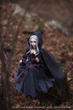 Viking Clothing, Art Clothing, Wiccan Witch, Gothic Dolls, Creepy Cute, Fairy Land, Diy Dollhouse, Bjd Dolls, Ball Jointed Dolls