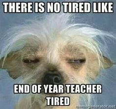 There is no tired like end of year teacher tired - teaching meme Teacher Tired, My Teacher, Teacher Stuff, Teacher Sayings, Funny Teacher Quotes, Teacher Morale, Staff Morale, Funny Quotes, Teacher Librarian