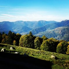 De Vogezen in Instagram-foto's - Bonjourfrankrijk.nl / Beautiful Vosges in France
