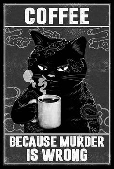 Cute Cats, Funny Cats, Funny Animals, Cute Animals, Crazy Cat Lady, Crazy Cats, Cat Memes, Funny Memes, Funny Signs