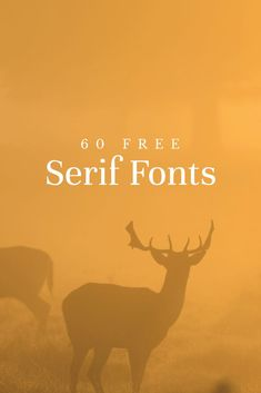 Fonts Handwriting Discover 60 free serif fonts to give your designs a traditional touch Learn Good to keep handy when you want something more classic. 60 Free Serif Fonts to Give Your Designs a Traditional Touch Free Typography Fonts, Best Serif Fonts, Sans Serif Fonts, Lettering, Font Design, Graphic Design Fonts, Typography Design, Free Web Design, Classic Fonts