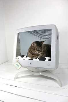 Upcycled Mac, to a cat in a Mac? Cute and super practical.