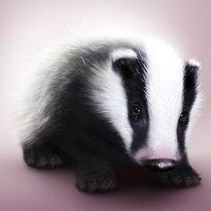 Badger by Arn0