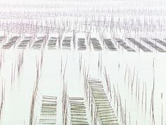 Xiapu China, Seaweed farm, NATIONAL GEOGRAPHIC.