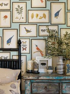 Every inch of space on this wall looks to be covered in identically framed botanical images… Is this a great option for a focal wall or too much flora, fauna and feathers for you?!? ‪#‎LoveItOrForgetIt‬