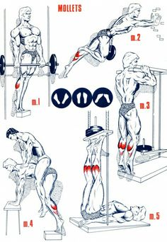 Bodybuilding Nutrition And Balance Gym Workout Tips, Dumbbell Workout, Workout Videos, Fun Workouts, At Home Workouts, Bodybuilding Nutrition, Bodybuilding Workouts, Shoulder Training, Calf Exercises