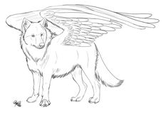 pictures of winged animals wolves and cats   Winged Wolf FREE lineart by Spiritwollf