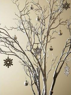 Christmas ~ Spray paint branches silver & decorate.  Simple & cute!
