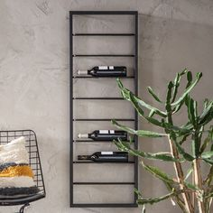Dit wijnrek voor aan de muur is gemaakt van zwart metaal. Met ruimte voor wel 9 flessen heb je altijd de juiste wijn binnen handbereik. Wine Rack, Ladder Decor, Ale, Furniture Design, Cacao, Home Decor, Decorations, Architecture, Products