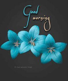 Good Morning Saturday Images, Good Morning Image Quotes, Good Morning Gif, Good Morning Picture, Morning Pictures, Morning Quotes, Morning Coffee, Morning Messages, Good Morning Beautiful Gif