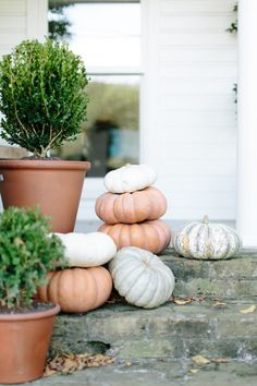 Ditch Your Bad Halloween Tricks For These Chic Fall Decor Ideas – Camille Styles Easy Halloween, Halloween Tricks, White Pumpkins, Autumn Home, Autumn Inspiration, Favorite Holiday, Halloween Decorations, Holiday Decor, Decor Ideas