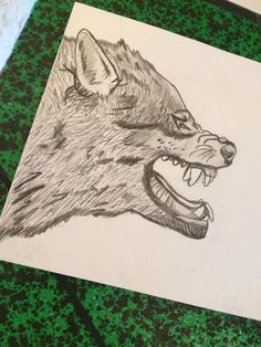 Dessin de loups, crayon gris HB, et crayon gris gras