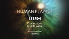 http://republikapodrozy.pl/bbc-human-planet-planeta-ludzi/