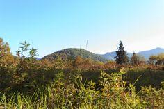 terra de volcans  #lafageda #fageda #fagedadenjorda #volca #volcano #garrotxa #lagarrotxa #nature #natura #landscape #paisatge #mountains #autumn #tardor #catalunya #catalonia #igers #igerscatalunya #photo #foto #canon #canon70d