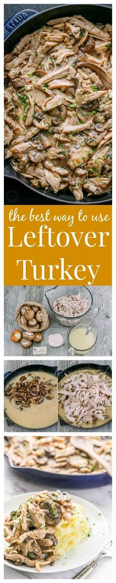 Leftover Turkey in Creamy Mushroom Sauce This Leftover Turkey recipe is by far my favorite way to use up leftover turkey! Turkey in creamy mushroom sauce is so easy and a big win in our family! Leftover Turkey Recipes, Leftovers Recipes, Dinner Recipes, Turkey Leftovers, New Recipes, Cooking Recipes, Healthy Recipes, Sauce Recipes, Recipies