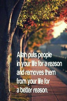 Allah puts people in your life for a reason and remove them from your life for a better reason...