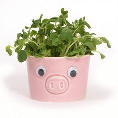 Needs smaller eyes This Little Piggy, Little Pigs, Pig Crafts, Piggly Wiggly, Pig Pen, Mini Pigs, Cute Piggies, Pet Pigs, Flying Pig