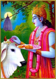 God Krishna Picture