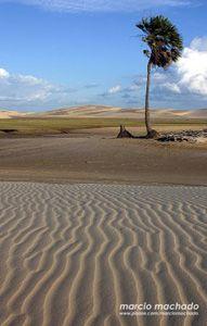 Parque dos Lençóis Maranhenses. Barreirinhas, Maranhão, Brasil.