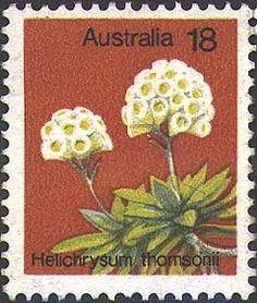 Australian Painting, Australian Plants, Australian Animals, Commemorative Stamps, Flower Stamp, Mail Art, Stamp Collecting, Postage Stamps, Flora