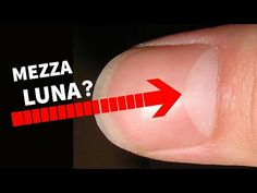 The video explains the structure/anatomy of the nail,Lunula also known as half moon in Latin found on various fingers/fingernails and its various interpretat. Health And Beauty, Health And Wellness, Nail Designs Pictures, Palm Reading, 8th Sign, Moon Shapes, Palmistry, Super Glue, Nail Trends