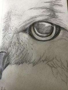 Pencil drawing of Owl Eye Easy Drawings, Pencil Drawings, Drawings Of Owls, Wall Art Quotes, Quote Wall, Animal Print Shirts, Owl Eyes, Funny Illustration, Animal Sketches