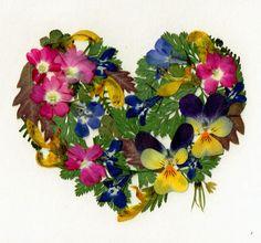 Heart of Flowers Pressed Flower
