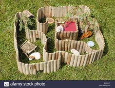 toys for guinea pigs - Google Search