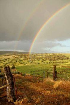 Wine country Australia