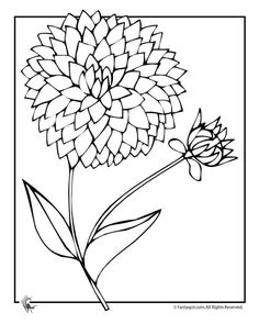 Flower Coloring Pages: Spring Flowers Dahlia Flower Coloring Page . Flower Coloring Pages, Colouring Pages, Colorful Flowers, Spring Flowers, Dahlia Flower Tattoos, Cross Stich Patterns Free, Spanish Colors, Doodle Images, Fruits Drawing