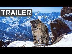 Πλανήτης Γη ΙΙ: Το θρυλικό ντοκιμαντέρ του BBC που άλλαξε τον τρόπο που βλέπουμε τον κόσμο επιστρέφει | Κόσμος | VIDEOS | LiFO