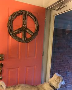 Love our driftwood peace sign on this coral door in Davenport, Iowa but we love the dog even more!  #asoulfulpurpose #beachdecor #driftwood #driftwoodhomedecor #peacesign #peacesigns #rusticdecor #rusticchic #cottagestyle #bohemian #bohostyle #driftwoodpeacesign